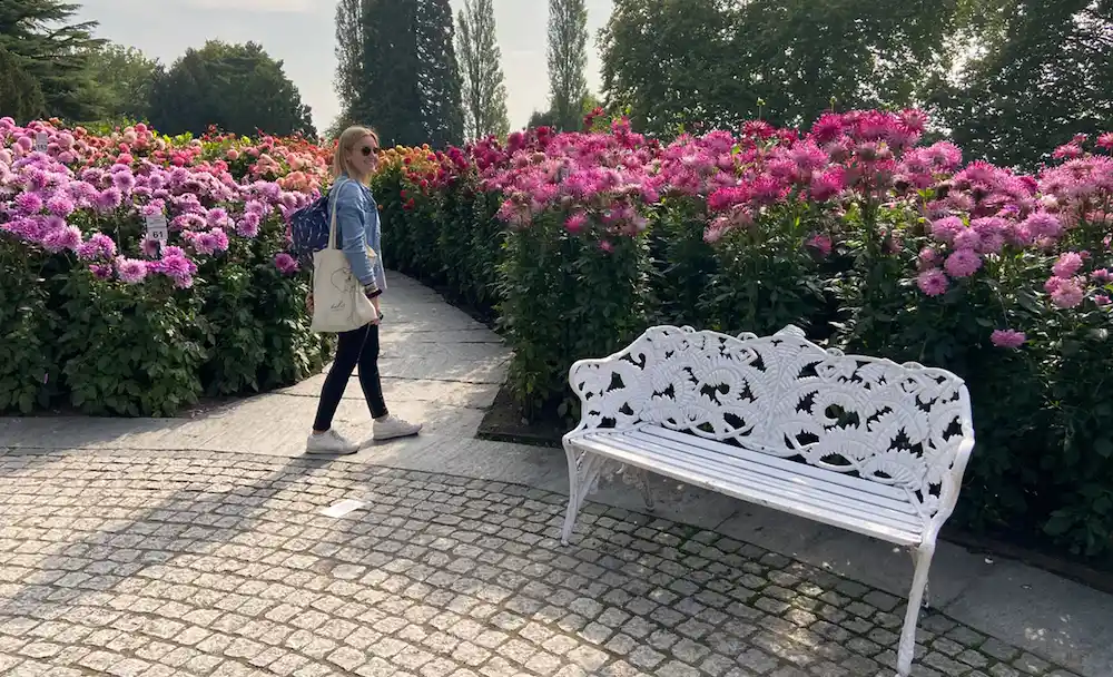 Young woman in a park, in the background are tall pink flowers